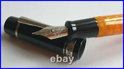 Dolcevita Federico Fountain Pen MINT Two resin barrels boxed + papers Italy